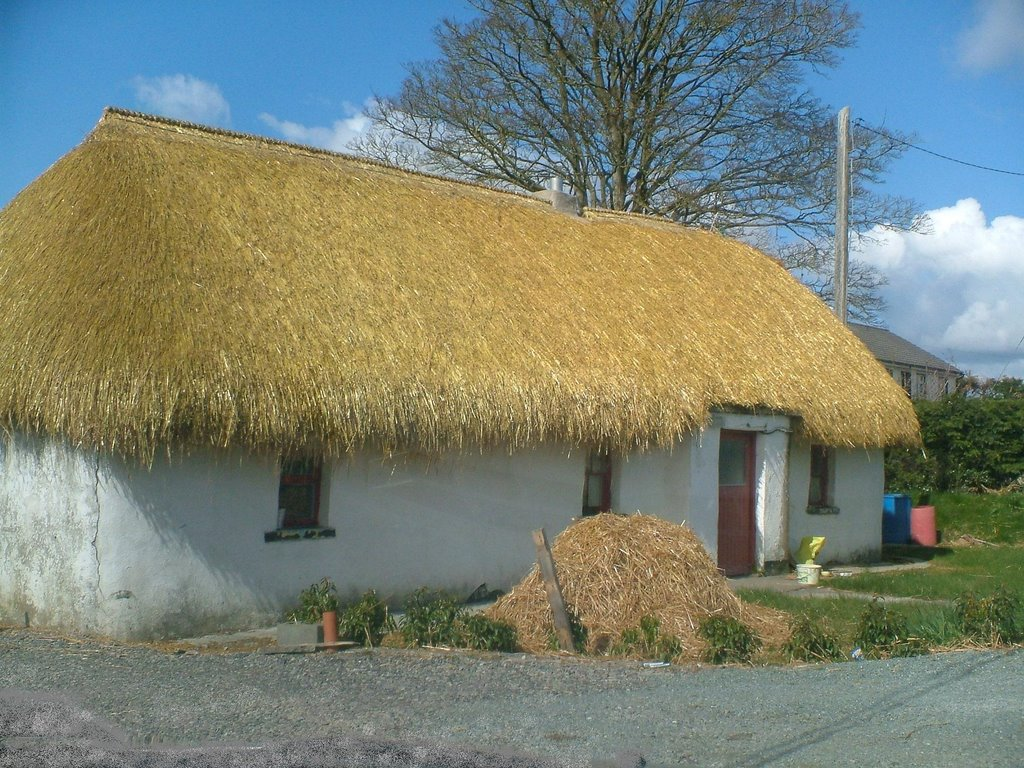 Newly Thatched Cottage