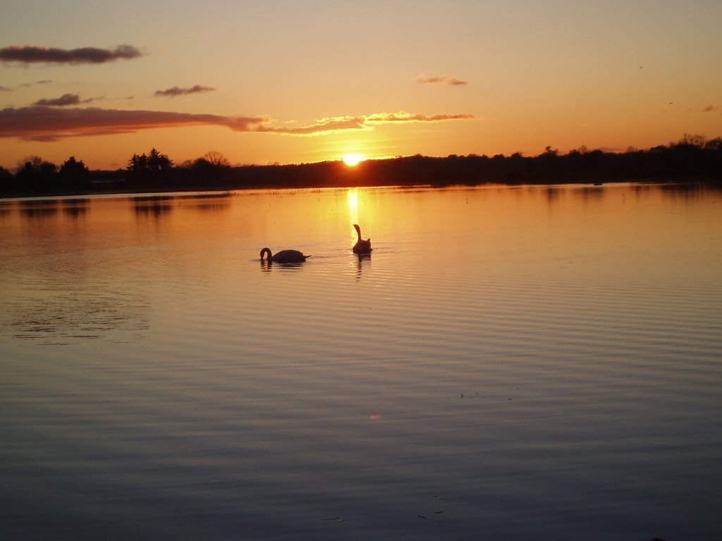 sunset in lough Ree