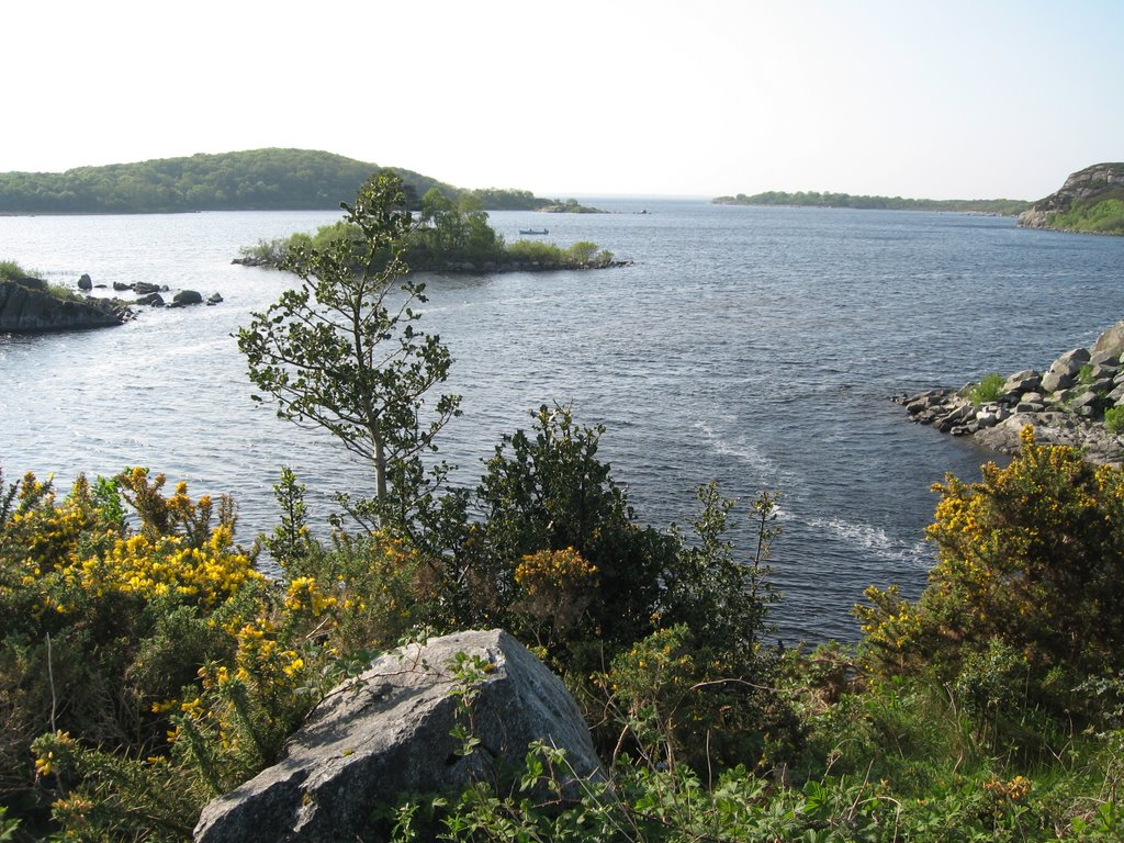 Crossmolina lough conn