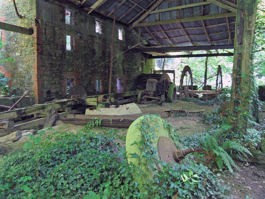 Abandoned Wood Mill, near Courtown