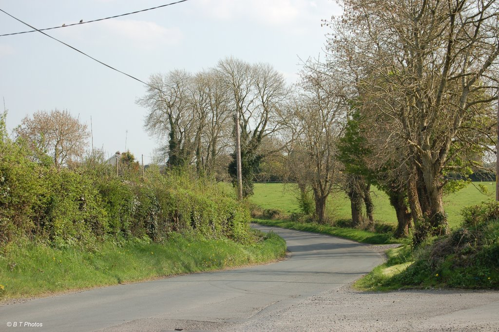 The road from Cushinstown to Thomastown