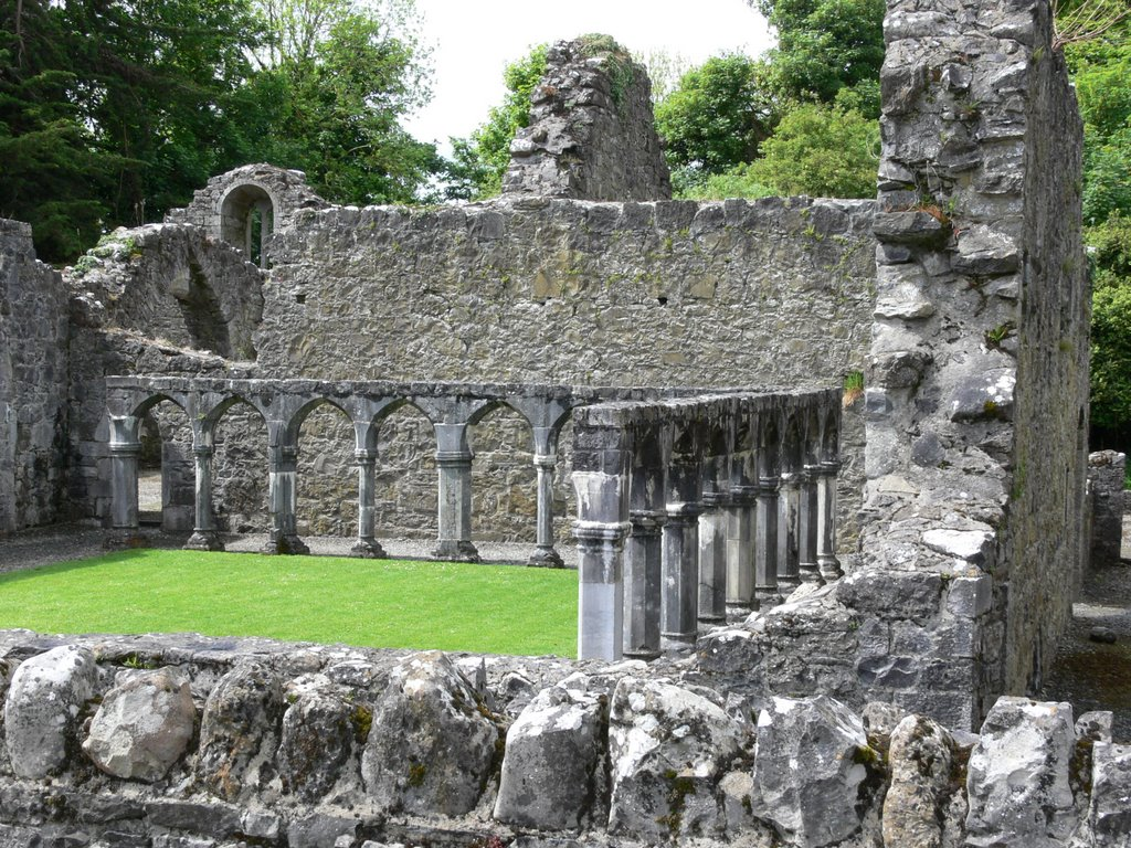 Portumna Priory (Ireland)