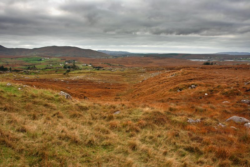 Donegal County