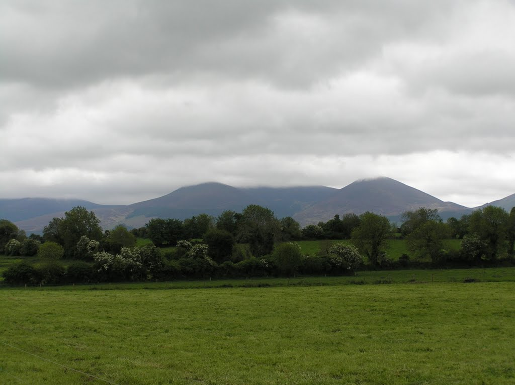 View on the Knockmealdown Mountains