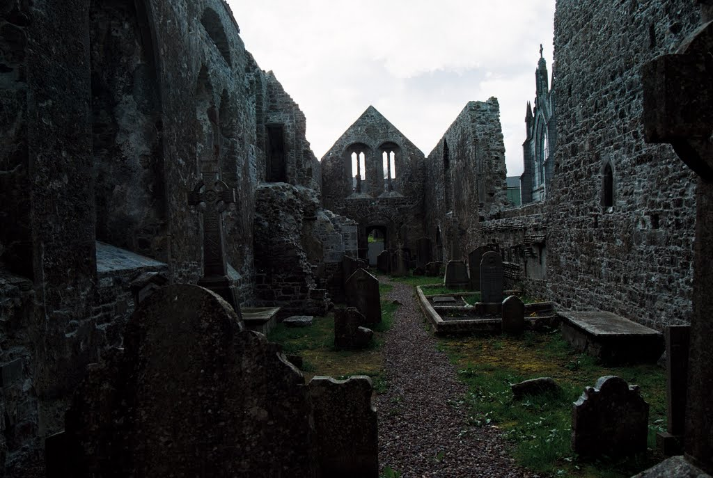 Abbey, Buttevant, Co. Cork, Ireland