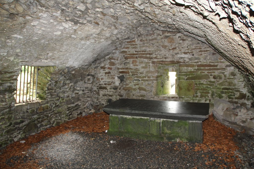 Vault, Munaincha Abbey, Co. North Tipperary, Ireland
