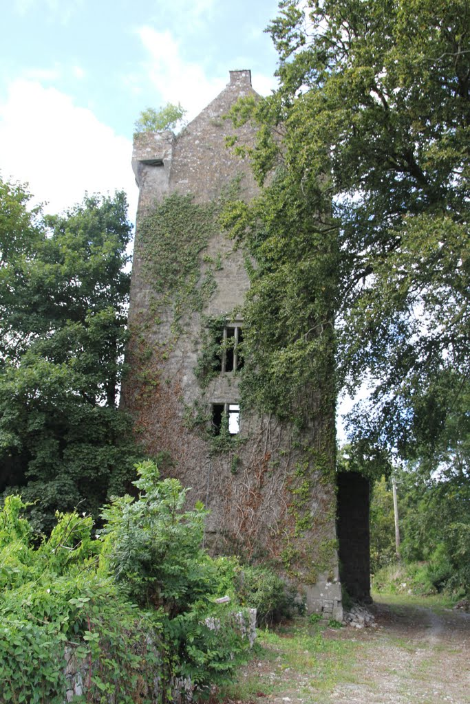 Castle, Ballyclough, Co. Cork, Ireland