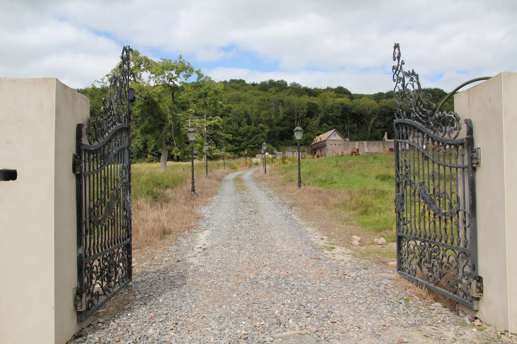 Gate, Near Buttevant, Co. Cork, Ireland