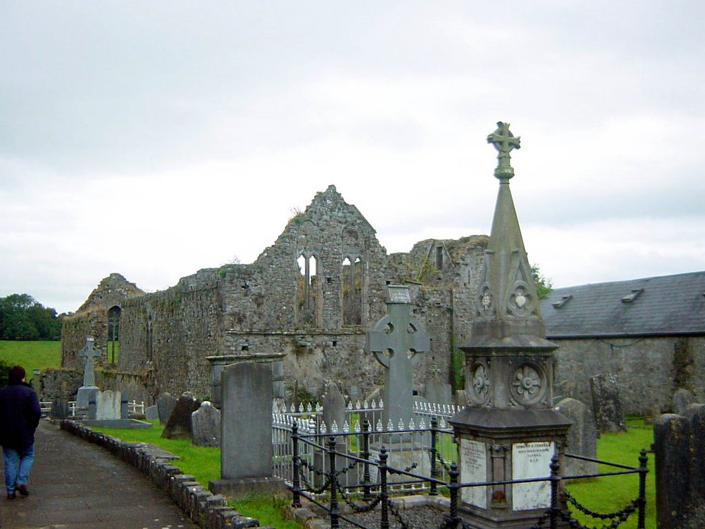 Mallow - Buttevant Abbey