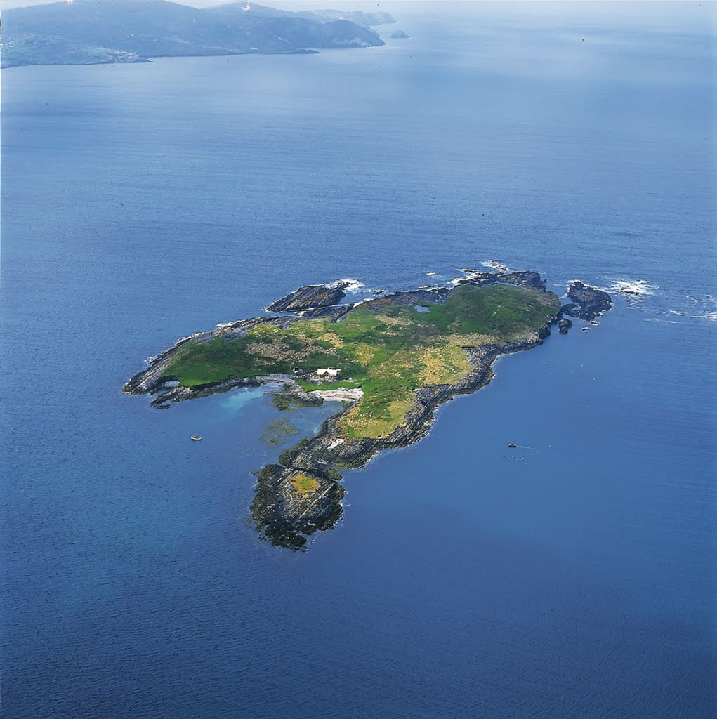 Carberry Island - Photo from helicopter