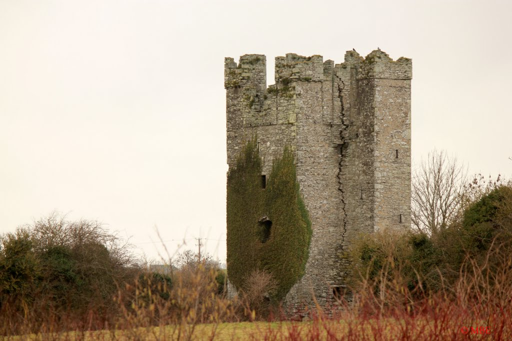 Dunmahon Castle, Co Louth