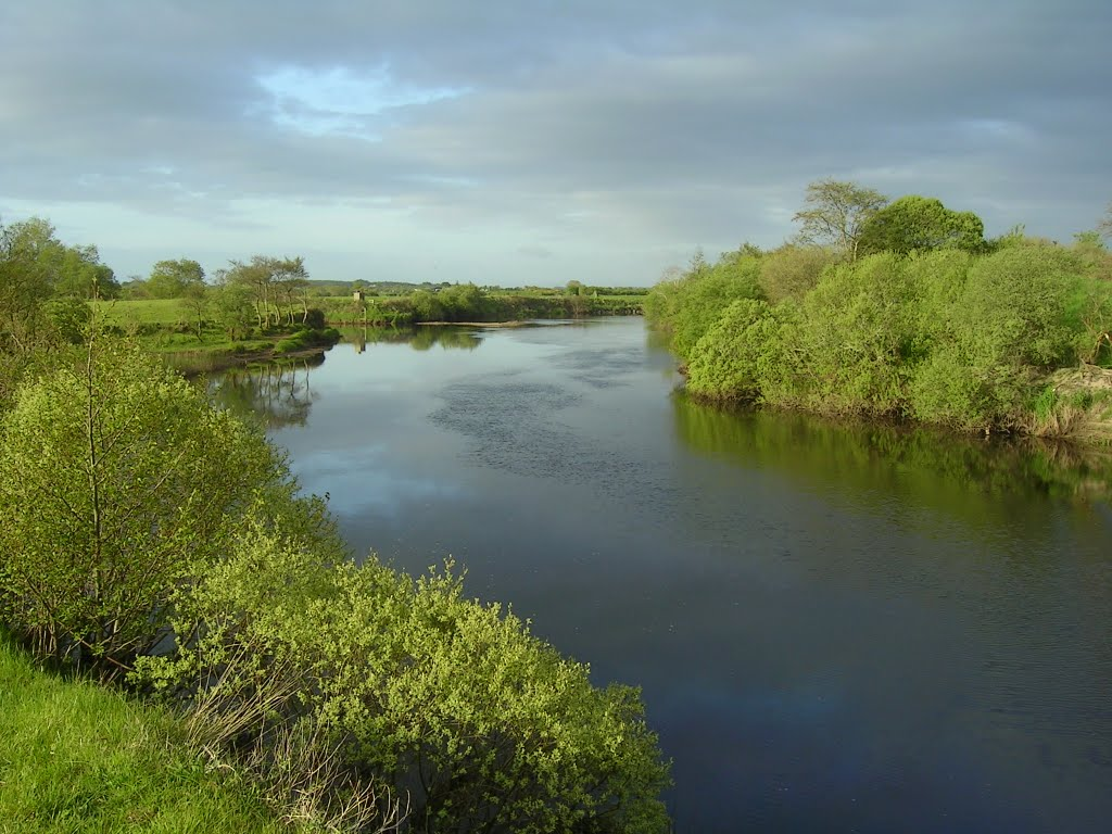 Clongee Fishery on River Moy - In Search of Salmon