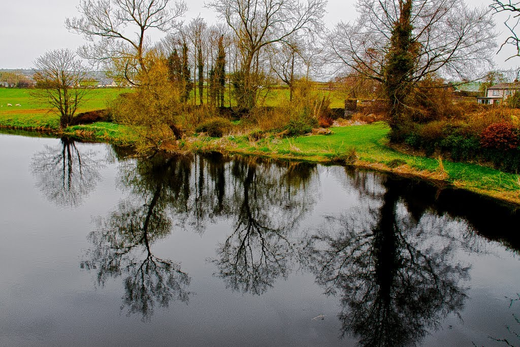 Reflections on the river Slaney at Clohamon