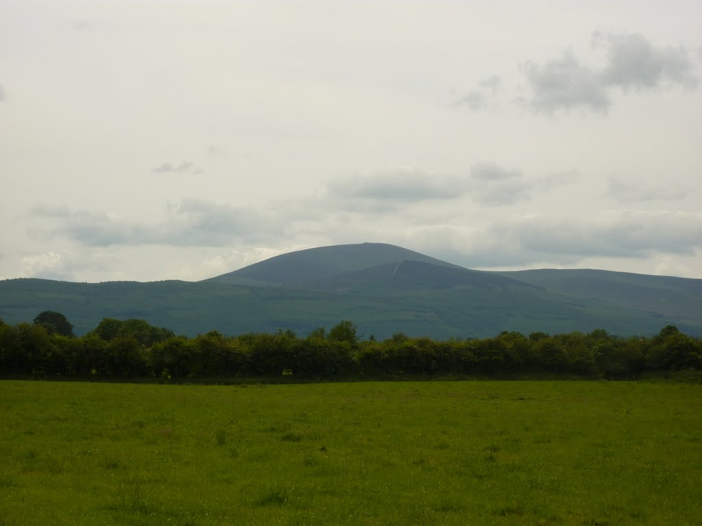 The Galtee Mountains