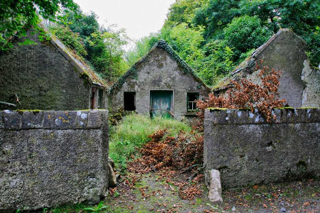 Coolbawn, Co. North Tipperary, Irland