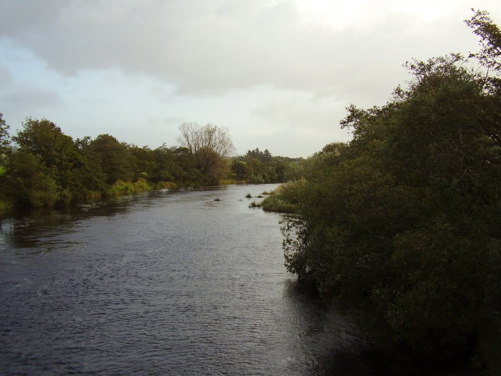 River Moy looking East, Ballylahan, Straide, County Mayo.
