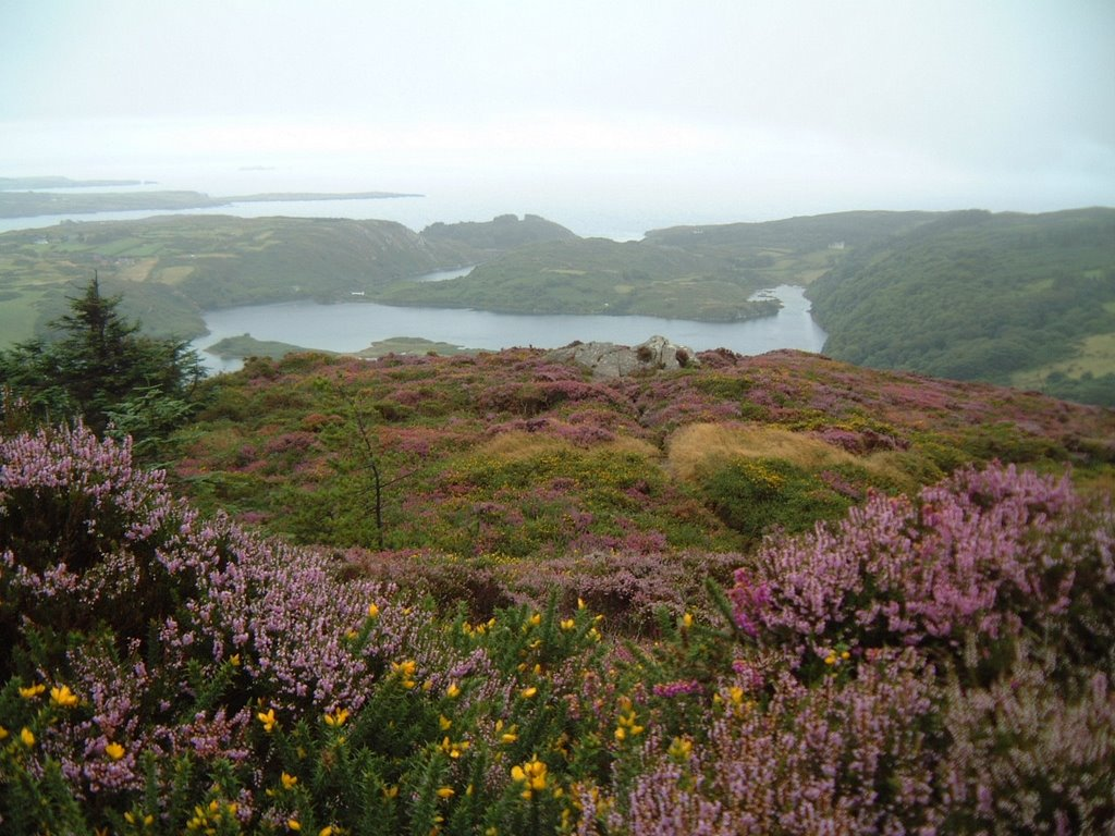 View of Lough Hyne and Ocean