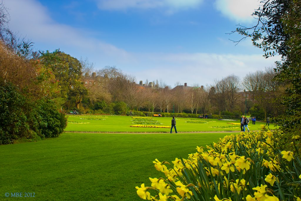 Springtime in Merrion Square