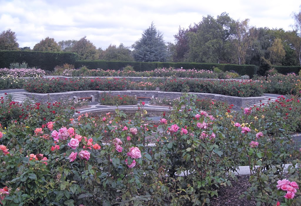 Memorial Rose Gardens,Islandbridge,Dublin Ireland
