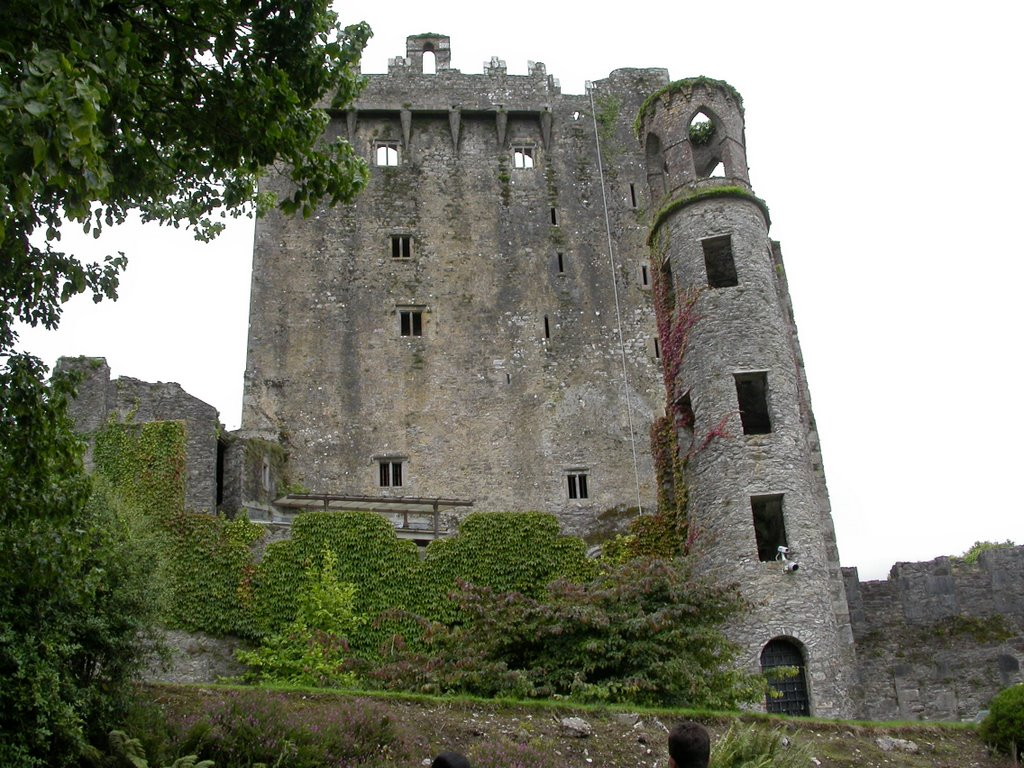 Blarney Castle- Cork Ireland