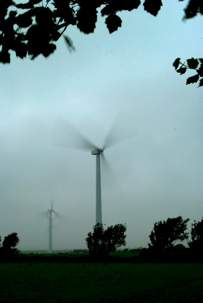 Windfarm in a gale.  (Richfield Windfarm, Ireland.)