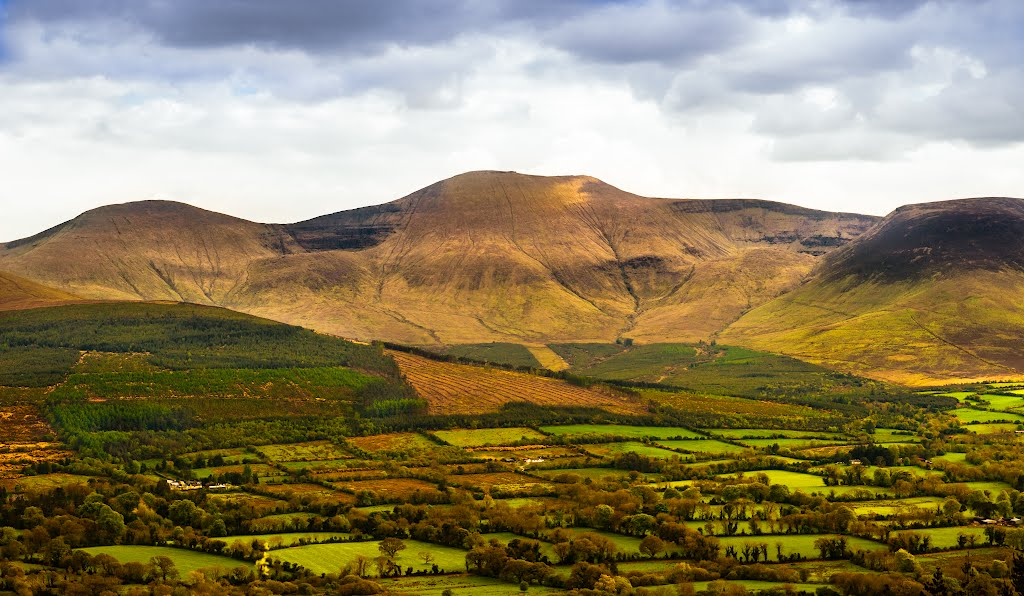 Hills of Tipperary