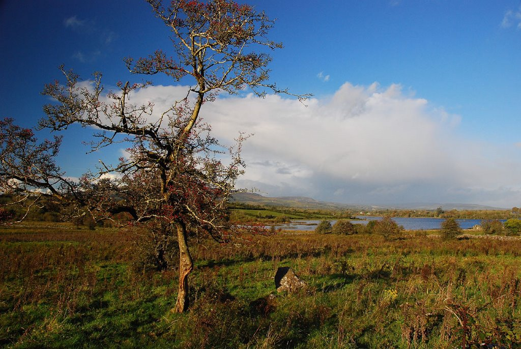 Lough Scur during autumn